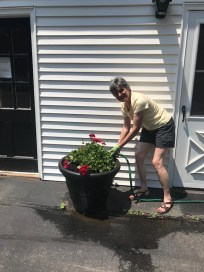 gardeners