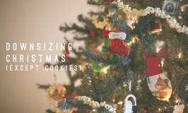 A Tiny Christmas.