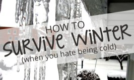 How to Survive Winter.