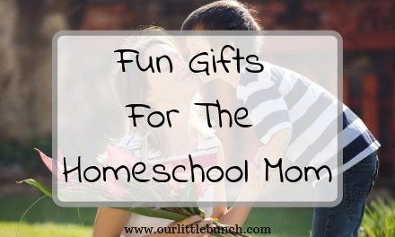 Fun Gifts For The Homeschool Mom