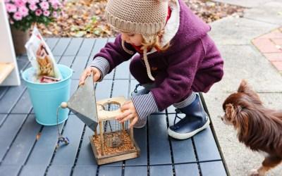 6 großartige Ideen rund um das Thema Herbst Erleben mit Kindern