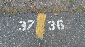"Site numbers are great on the road, after you are parked already and notice them. All of the traditional numbers were on the ""backside"" of the site."