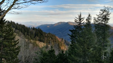 Southeastern View at Newfound Gap 5,046ft