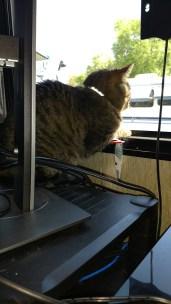 Rico's new vantage point is behind Jason's monitors