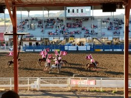 "Riders on ""pink night"" opening the Cody Stampede Rodeo"