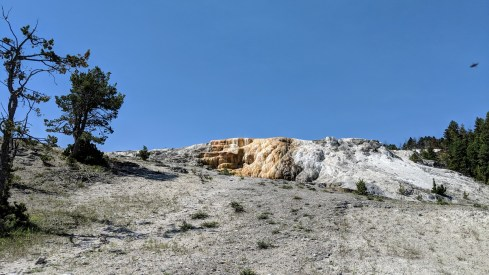 Walking up across the Mammoth Springs