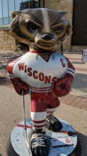 Bucky Badger Artwork - Pucky