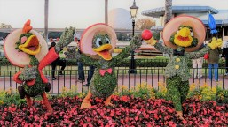 Three Caballeros topiaries at the Epcot Flower and Garden Festival