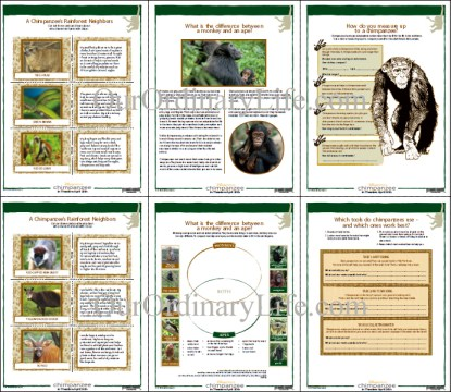 DIsneynature Chimpanzee Activities Sheets Sample