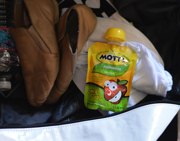 motts applesauce  (3)