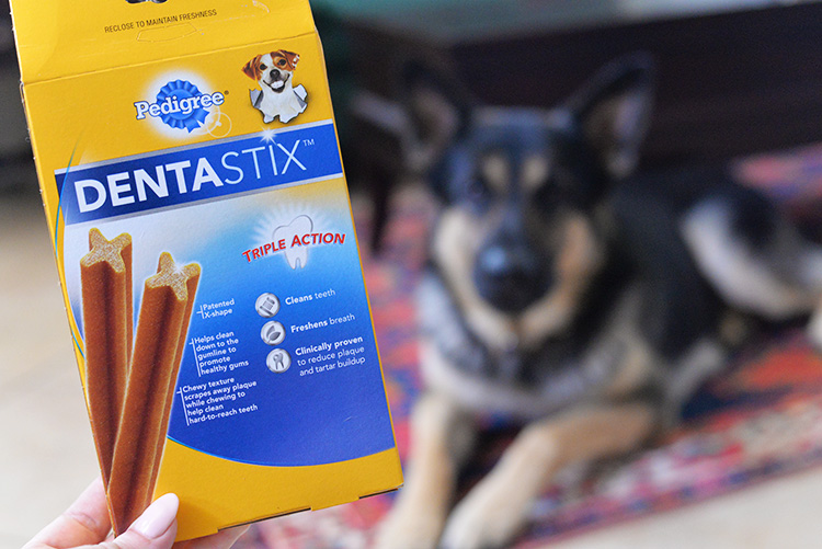DENTAStix For Dogs Cleans Teeth Freshens Breath reduce plaque