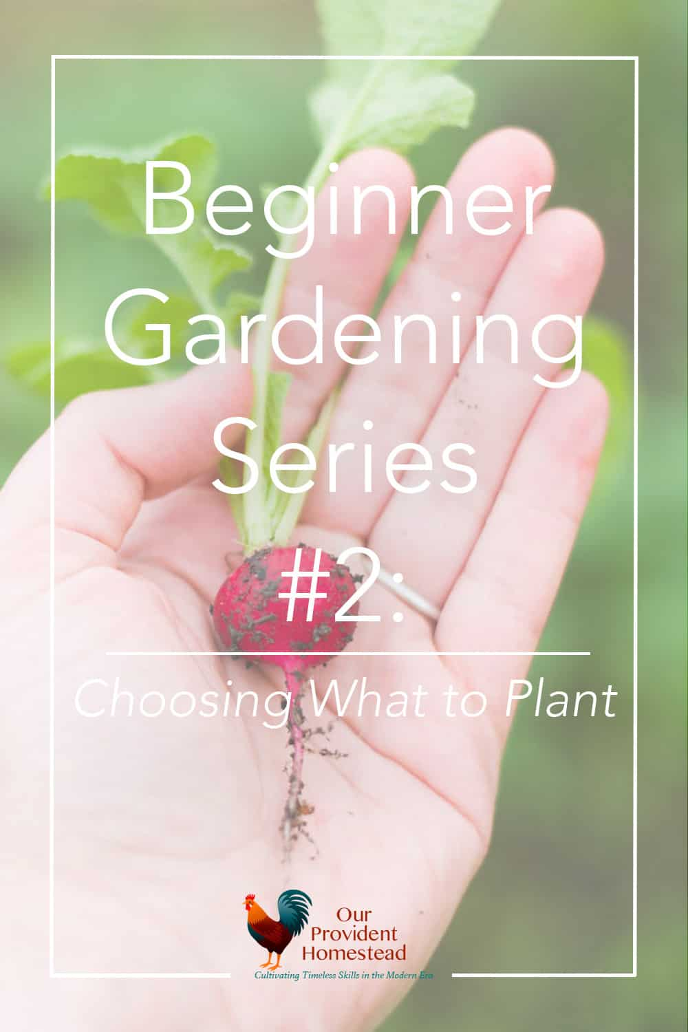 Are you new to gardening? Our beginner gardening series will help answer your questions, including choosing plants for your garden patch. Beginner Gardening | Easy Plants to Grow | Choosing Plants