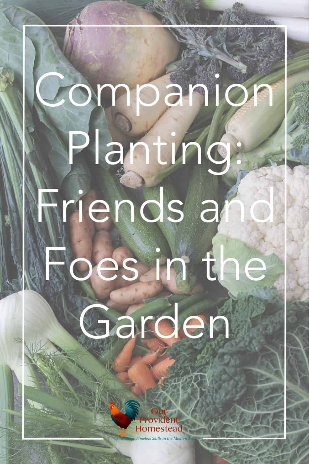 Do you want to have the best harvest from your garden? Companion planting helps increase harvest and deter pests by planting certain plants together. #gardening #garden #gardeningtips #companionplanting #homesteading