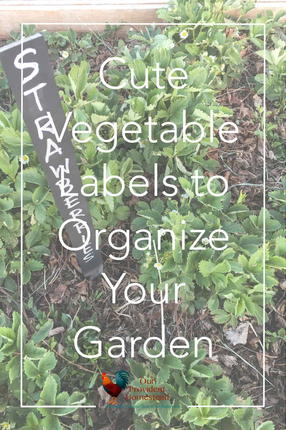 How do you make your garden look pretty and organized? These fun and cute vegetable labels are a quick way to organize your garden. #garden #gardening #gardeningtips #homesteading