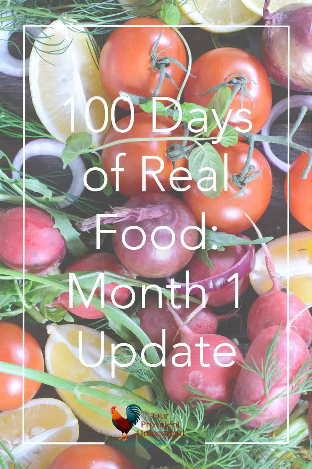 Are you on a real food journey? Click here to see how my first month went while participating in the 100 days of real food challenge. #100daysofrealfood #realfood #realfooddiet #homesteading #healthy