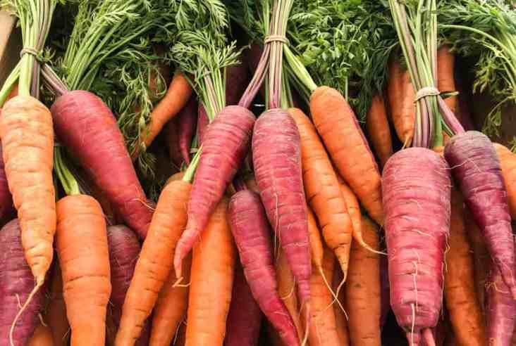 Do you like to shop at the farmers market? Click here to get our tips and tricks to make your shopping experience productive and joyful. Farmers Market | Local Food | Real Food
