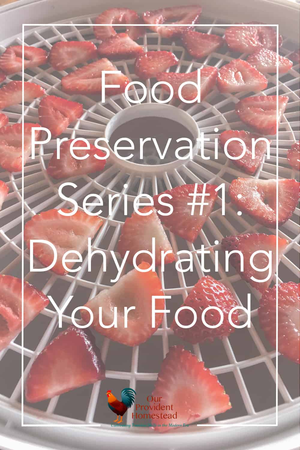 How do you preserve food for the winter? Click here to begin this food preservation series with learning how to dehydrate food and why you should try it. Dehydrating | Food Preservation | Homestead Kitchen