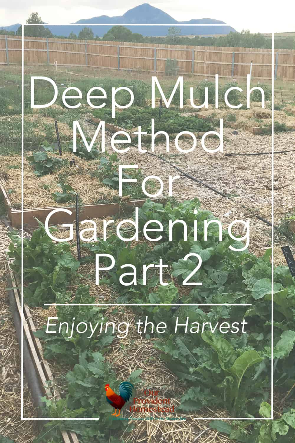 Are weeds your garden's worst enemy? Click here to see how using the deep mulch method for gardening helped us enjoy the harvest this year. Deep Mulch Method | Gardening | Enjoying the Harvest