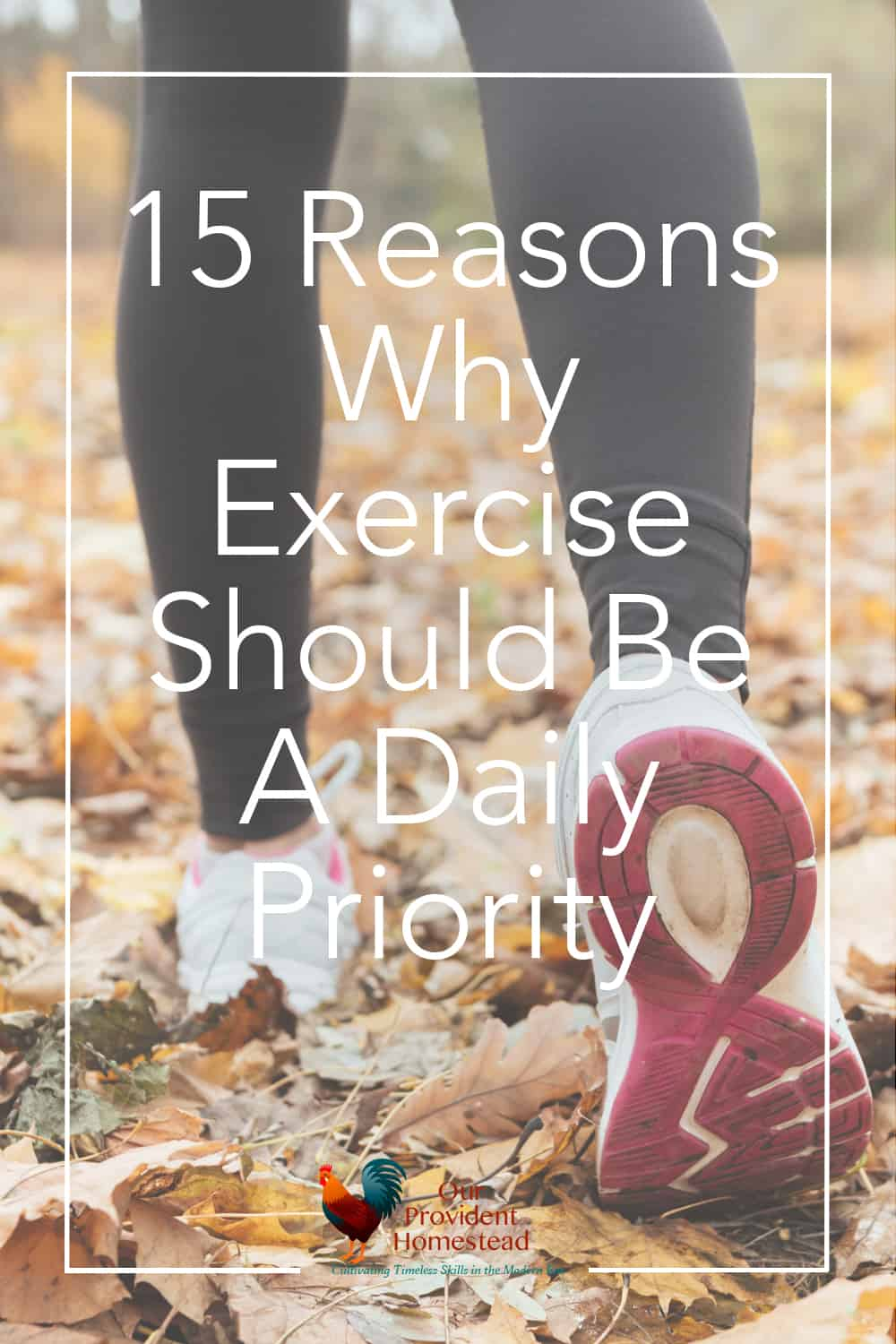 Is exercise part of your daily routine? Click here to see why exercise is important and how we can incorporate it into our daily lives. Exercise   Importance of Exercise   Healthy Living