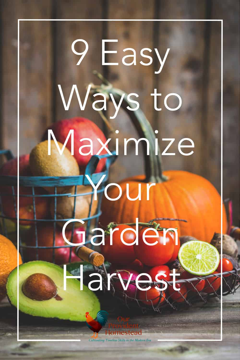 Don't you just love harvesting fresh food from your garden? Click here to see how to maximize your garden harvest today! #homesteading #gardening #fallharvest #harvest #gardeningtips