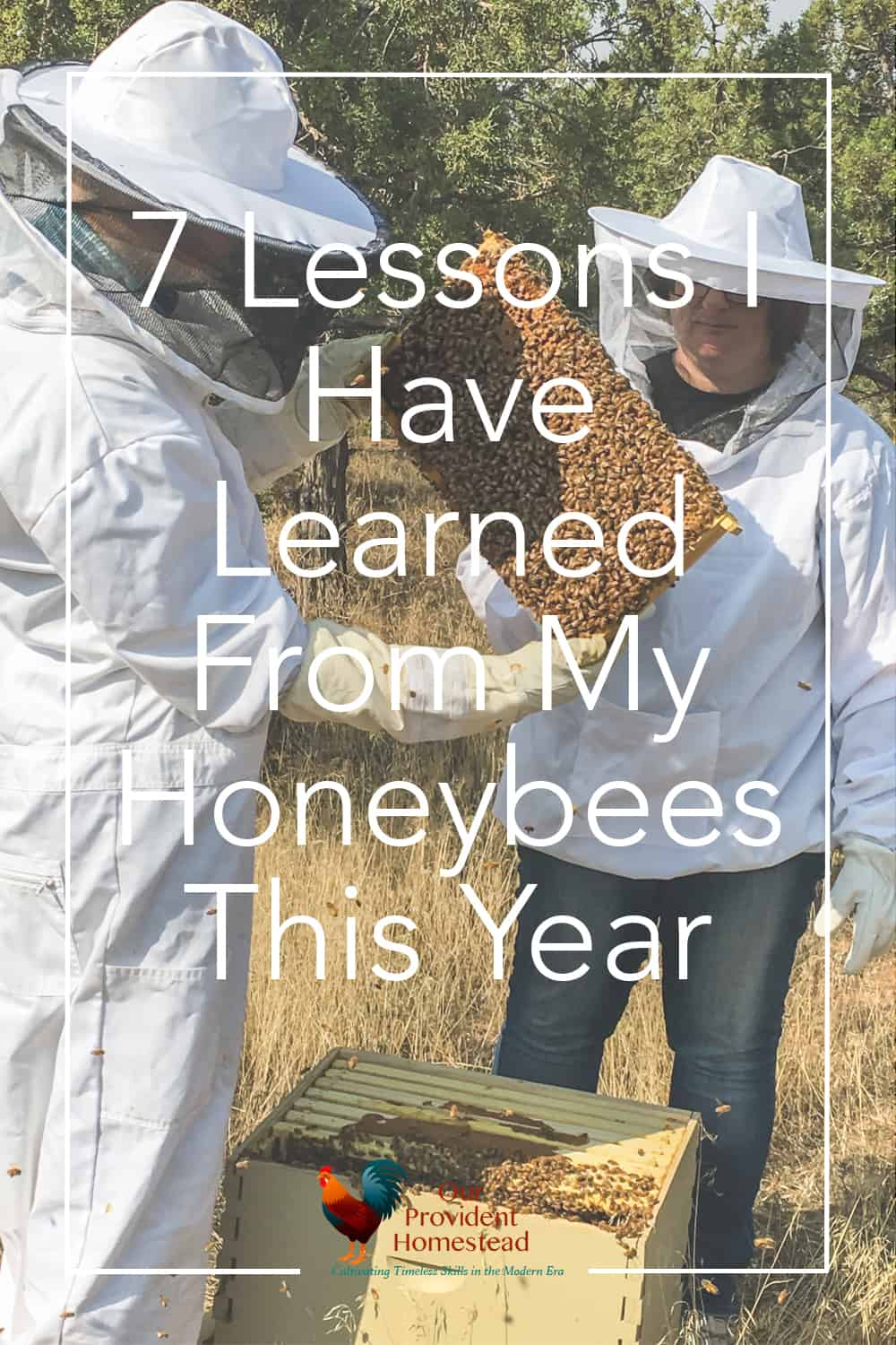 How are my honeybees doing this year? Click here to see the 7 lessons I have learned from my honeybees this year to be a better beekeeper. #beekeeping #honeybees #homesteading