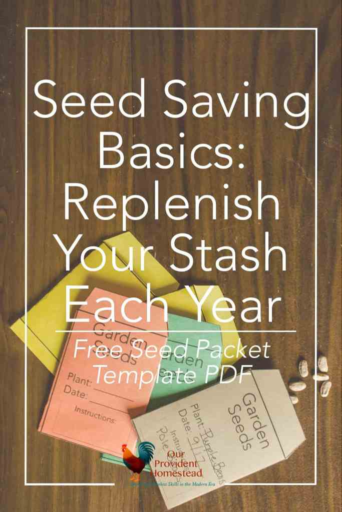 Would you like to learn how to garden without having to buy seeds every year? Click here to see how seed saving can save you time and money. Seed Saving | Gardening | Homesteading