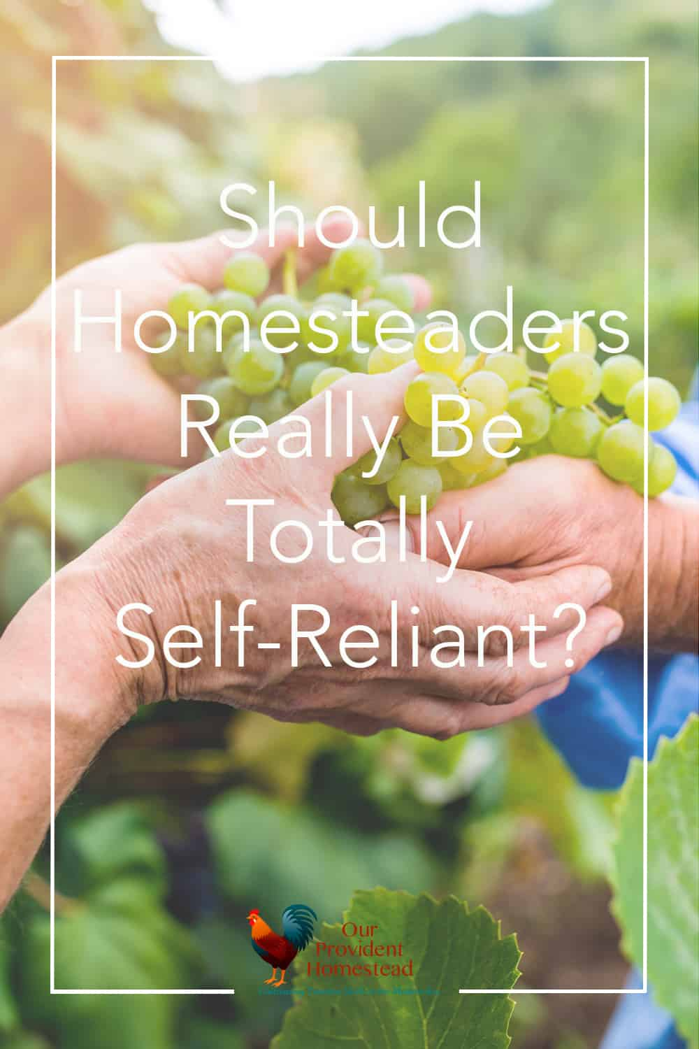 Are homesteaders really self-reliant? Click here to see why even though we work towards the goal of self-reliance, we don't want to get there. Community | Self-Reliance | Homesteading