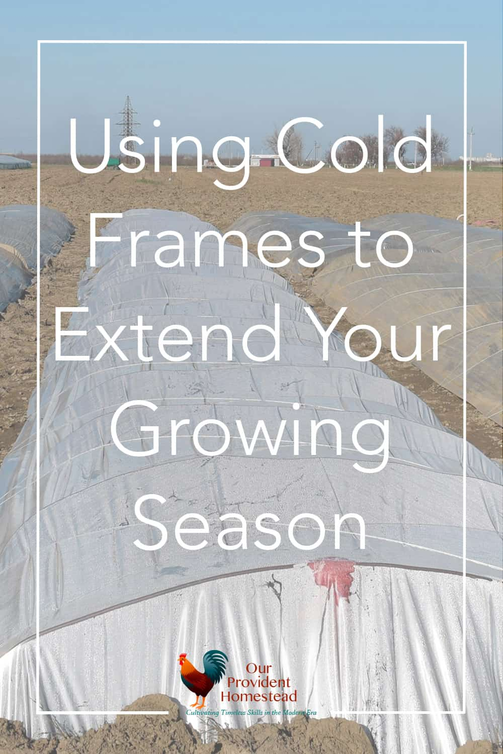 Is the fall too short to grow much where you live? Click here to see how using cold frames can extend your growing season. #gardening #coldframes