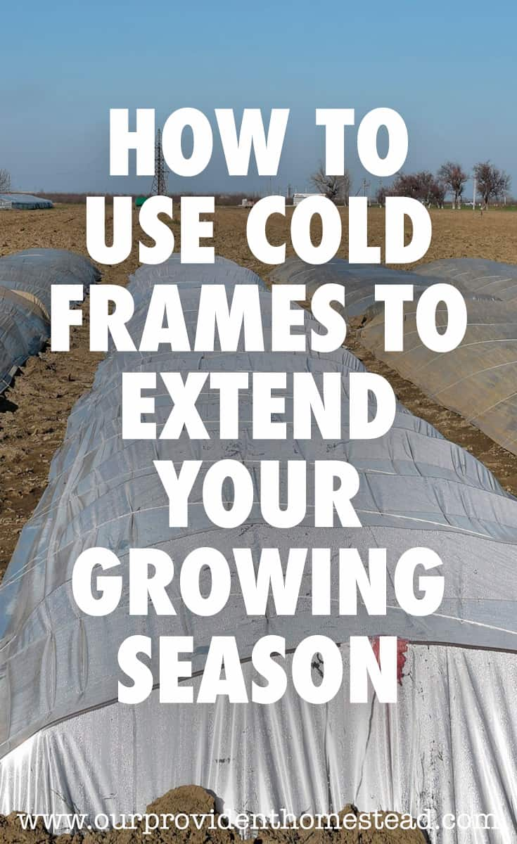 cold frames pin