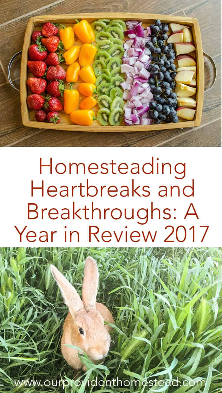 Did you accomplish your homesteading goals this year? We are looking back on our year and seeing what we completed and what needs to be done next year. #homesteading #yearinreview2017 #homesteadinggoals