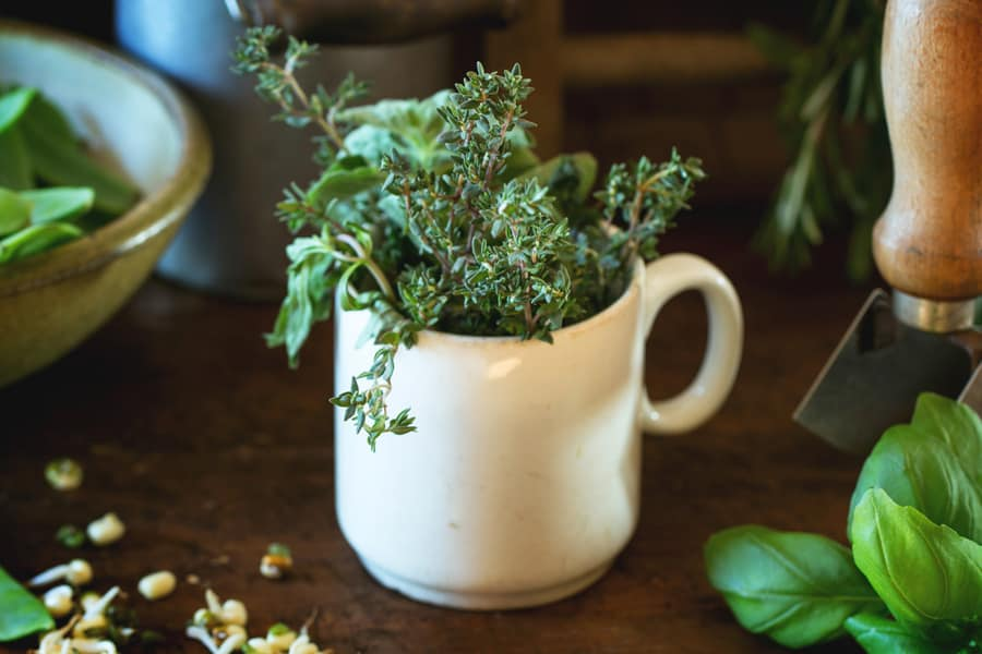 white mug full of green herbs