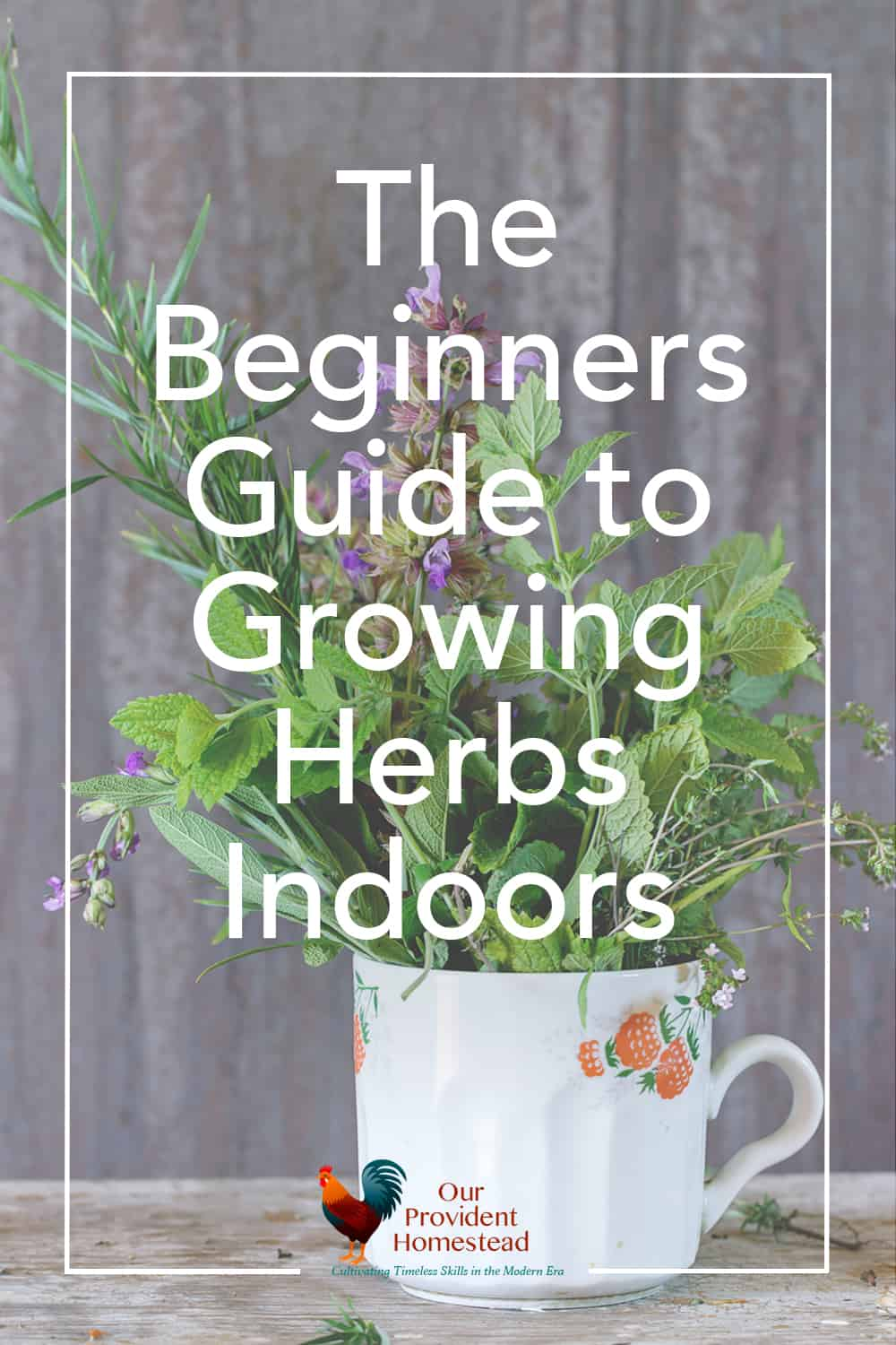 """pinterest pin for """"the beginners guide to growing herbs indoors"""""""