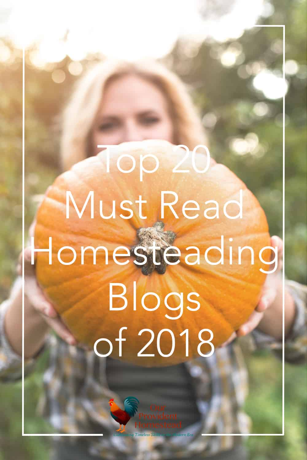 "pinterest pin for ""top 20 must read homesteading blogs of 2018"""