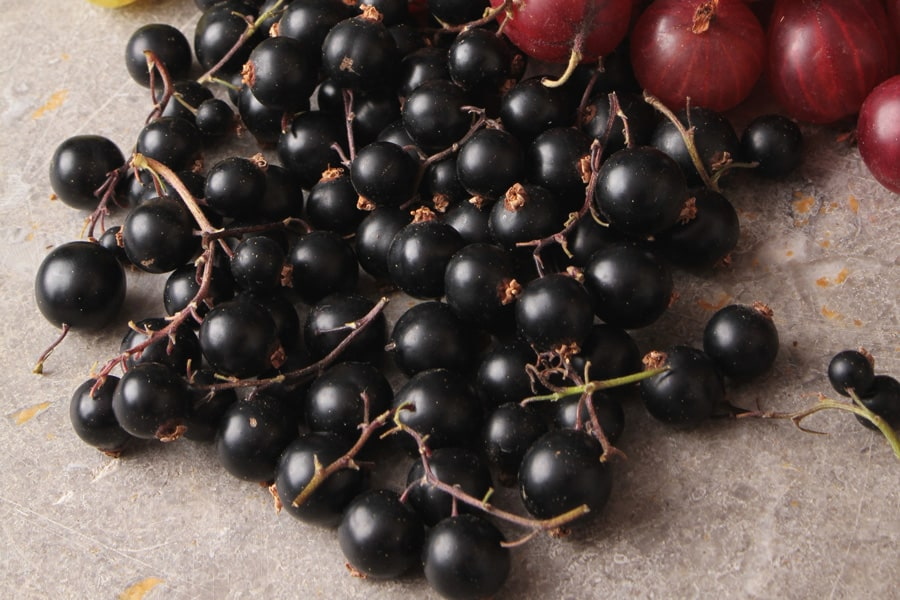 elderberries on a wooden table
