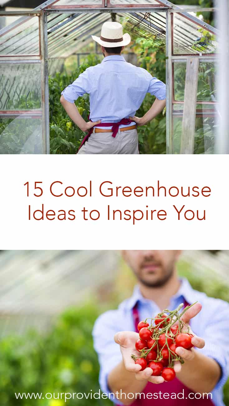 Is spring not coming fast enough for your green thumb? Click here to see 15 cool greenhouse ideas to inspire you to build a greenhouse in your backyard to get planting sooner. #garden #gardening #gardenideas #greenhouse