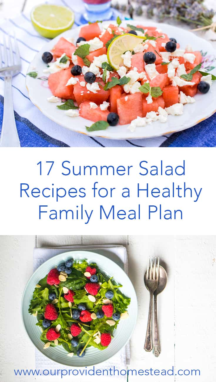 Are you looking for something healthy to eat this summer? Click here to see 17 summer salad recipes for a healthy family meal plan. #healthyrecipes #summer #recipes #salads