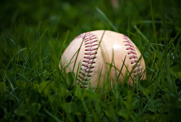 a baseball laying in the grass