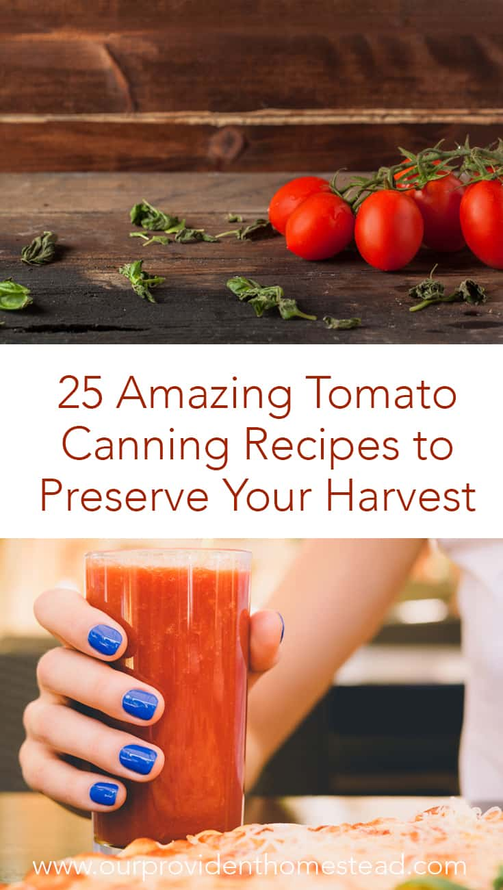 Is your garden overflowing with tomatoes? Click here to get 25 amazing tomato canning recipes to preserve your harvest this year. #gardening #tomatoes #foodpreservation #canning #canningrecipes