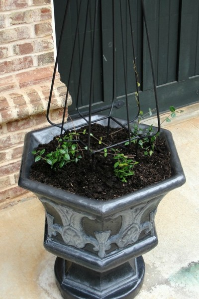 DIY Paint Finish for Concrete Planter