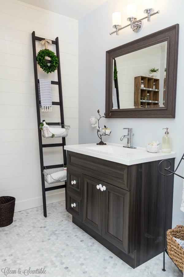 InsMonBathroom-Storage-Ladder