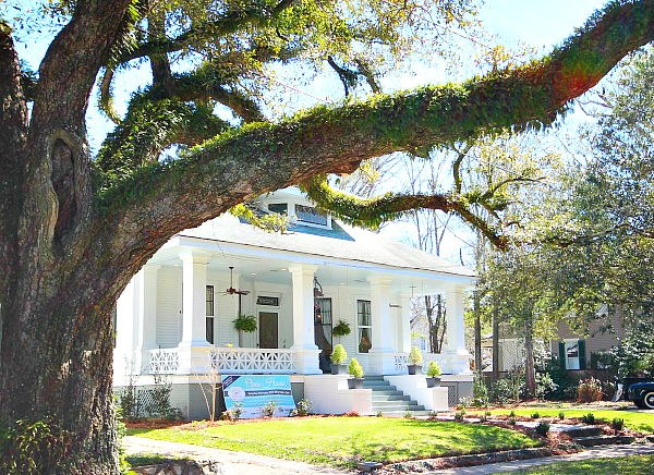 Southern Romance Home - Old trees in Mobile Alabama at the Southern Romance home