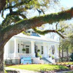 Southern-Romance-Home-Old-trees-in-Mobile-Alabama-at-the-Southern-Romance-home.jpg