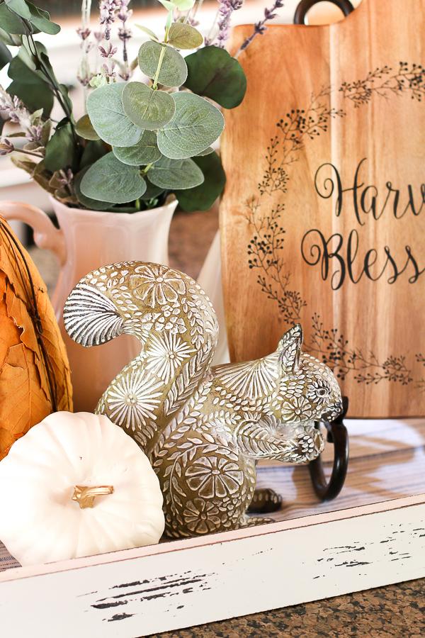 squirrel and pumpkins