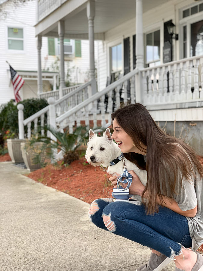 westie with girl