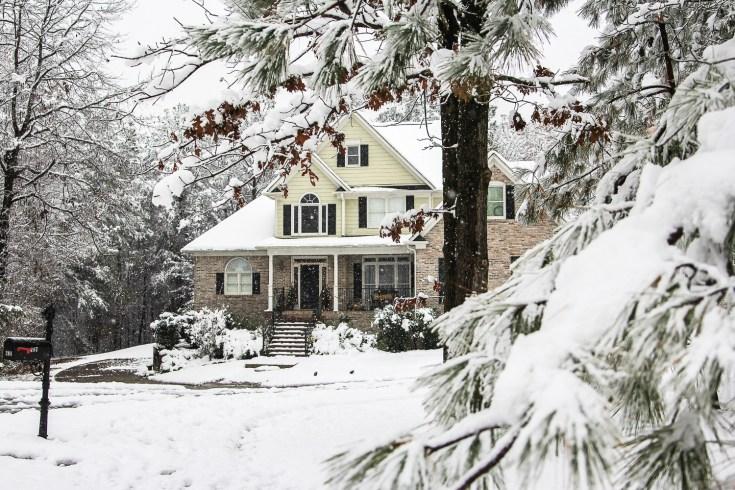 It's Snowing in the Pines - Unskinny Boppy