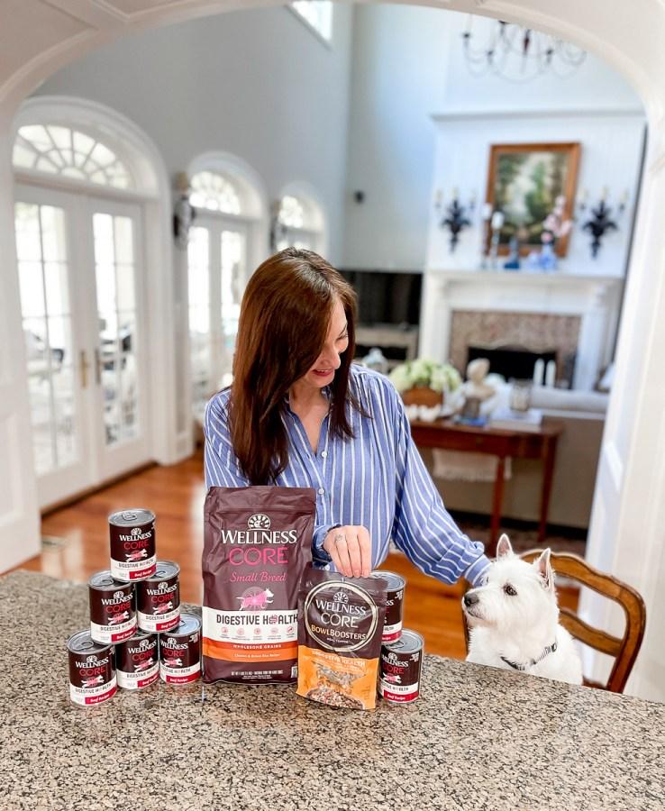 dog's digestive health food