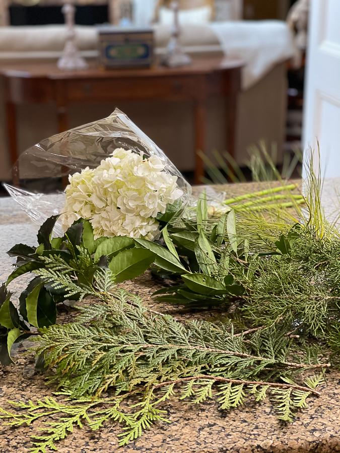 evergreens and hydrangeas