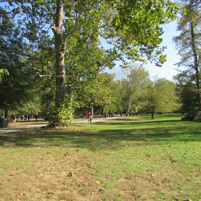 green space for activities