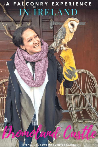 Falconry experience in Ireland at a castle was one of the highlights of our entire trip. We highly recommend everyone to enjoy this unique experience. #Castle #CastleHotel #Ireland #Falconry #DromolandCastle