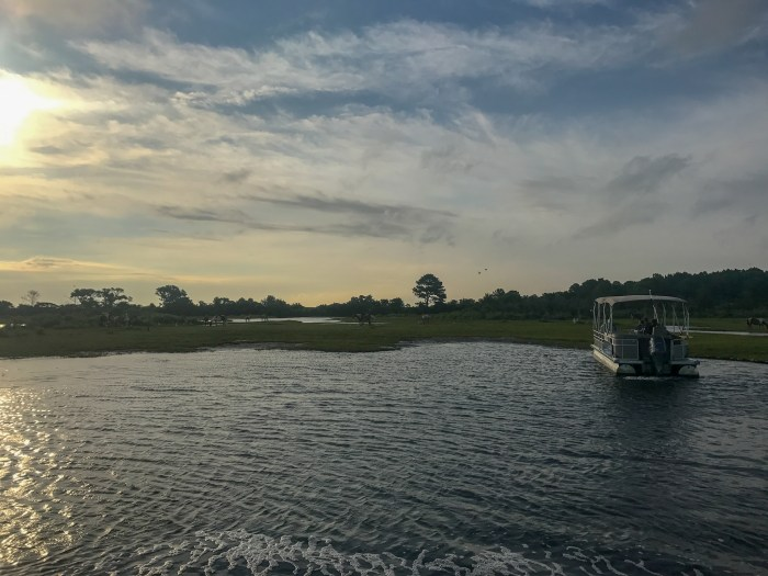 A sunset cruise is one of the best things to do in Chincoteague.